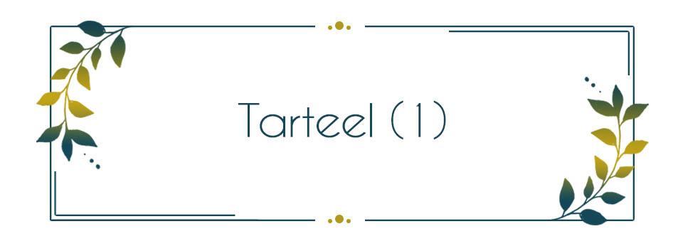 Voice & Tunes - Tarteel 1