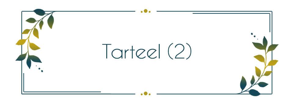 Voice & Tunes - Tarteel 2
