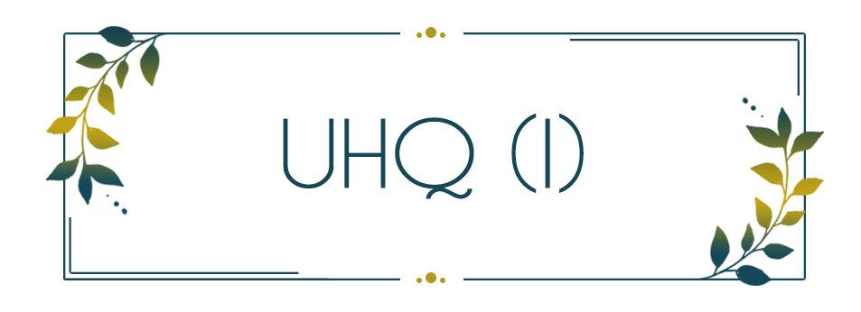 UHQ_INT (I)