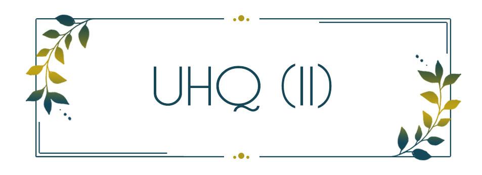 UHQ_INT (II)