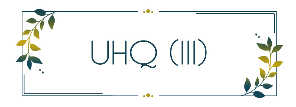 UHQ_INT (III)